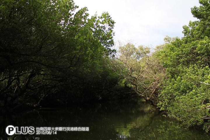 台南四草大眾廟竹筏港綠色隧道