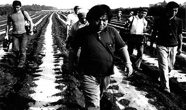 美國導演芭芭拉.漢默的紀錄片《解構小川紳介》(2000)呈現已故日本紀錄片大師小川紳介(1936-1992)的攝製小組對政治抱負的深思,和社運藝文團體的兩性互動。漢默以女權者、外國人、導演的身分,選擇了不與拍攝對象站在一起的方式「解構」小川紳介。