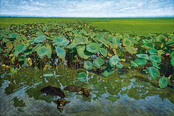 黃銘昌 Huang Ming Chan 悠遊 Leisurely Floating 130x194cm 2004 油畫 Oil on Canvas