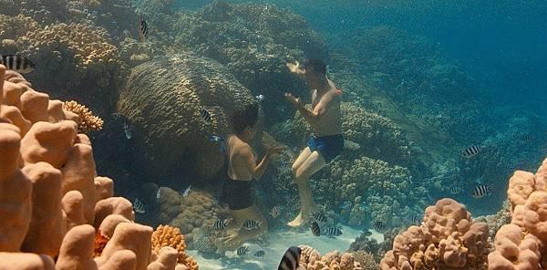 001【梭哈人生】劇照_湯姆漢克斯(右)在片中有跟中東女醫師(左)深海裸泳的浪漫橋段