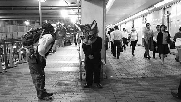 電影《春風稍來的問候》導演多莉絲朵利以「喵頭男」一角向日本文化致意