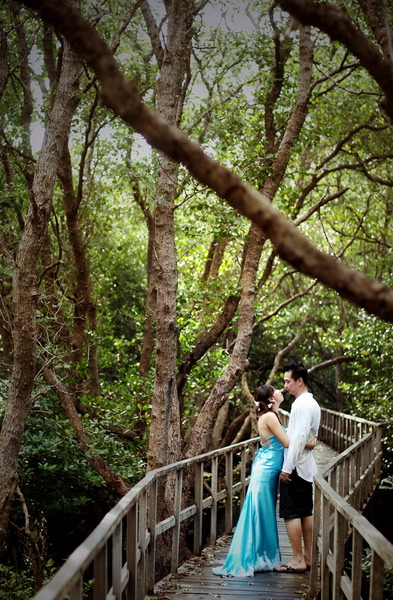 mangrove7.jpg