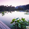 FSBLS044-Meditation in Lilypond.jpg