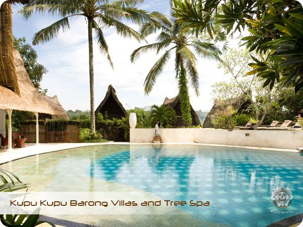 Kupu Kupu Barong Resort and Tree Spa Swimming Pool