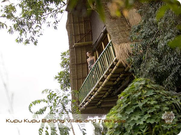 Kupu Kupu Barong Resort and Tree Spa Mango Tree Spa by L