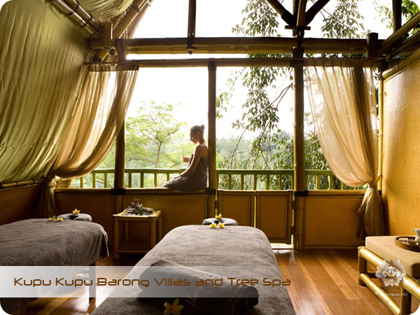 Kupu Kupu Barong Resort and Tree Spa Tree Spa