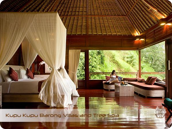 Kupu Kupu Barong Resort and Tree Spa Ayung River Club Villa