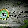 Bali Safari & Marine Park.jpg