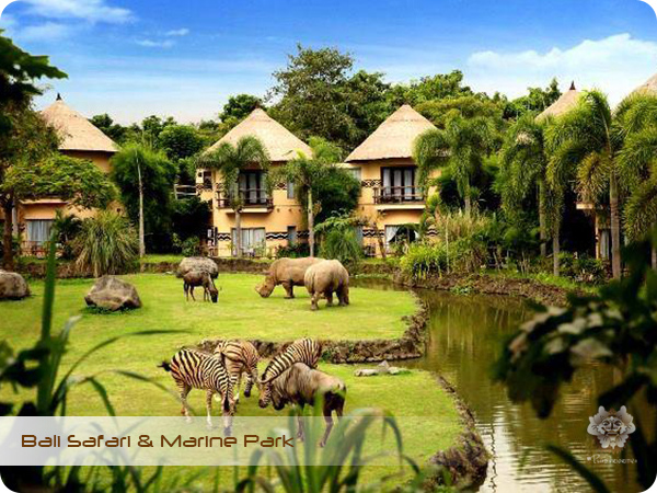 Bali Safari & Marine Park Mara River Safari Lodge.jpg