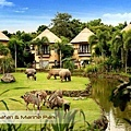 Bali Safari & Marine Park Mara River Safari Lodge.jpg