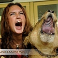 Bali Safari & Marine Park Animal Photo.jpg