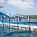 藍夢島海平台