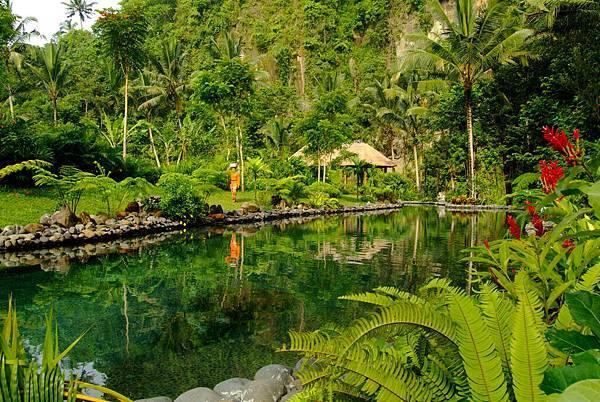 Lagoon Pool.jpg