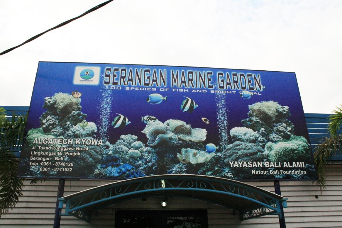 海生館Serangan Marine Garden (1).JPG