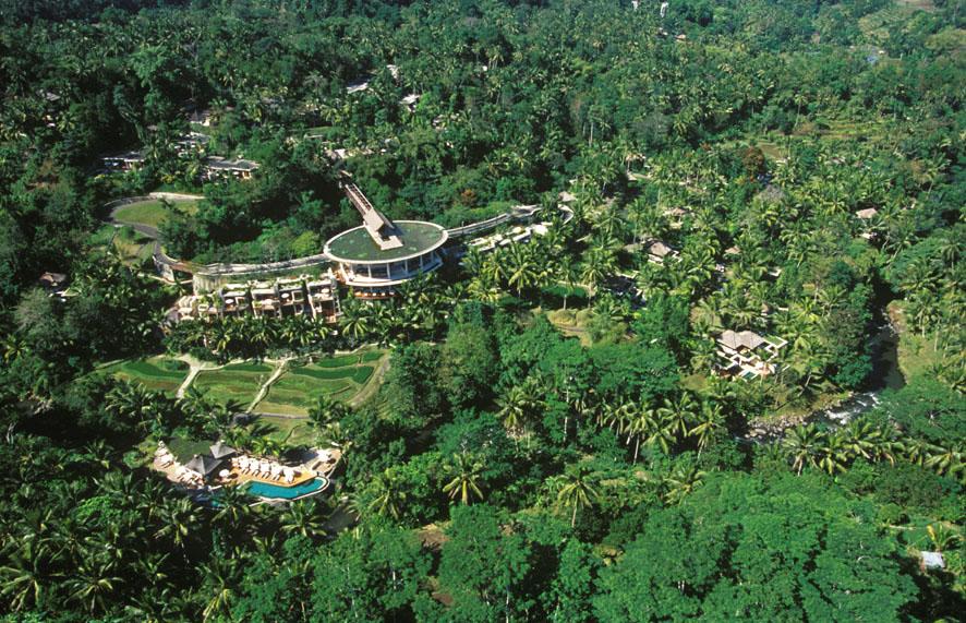 Aerial View 1.jpg