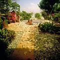 06 - Villa Plunge Pool.jpg