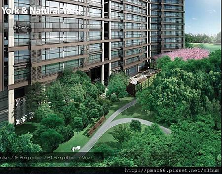 NY21公園景觀大道-1.jpg