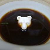 熊熊出頭天了(Meet Bear 覓熊咖啡)