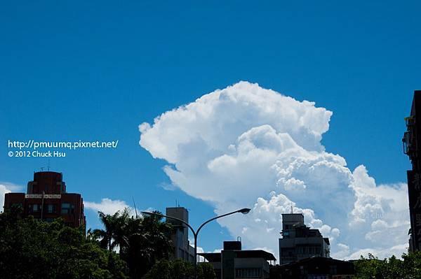 昨天看到像是黃金獵犬的雲朵 結果停好車要拍 靠得太近 雲朵就變成了綿羊