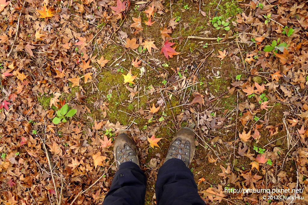 你看到的可能是一雙孤單的腳 而我拍的卻是那一葉楓紅  每個人都有自己必須守護的珍寶 我們並不孤單~ I STAND ALONE