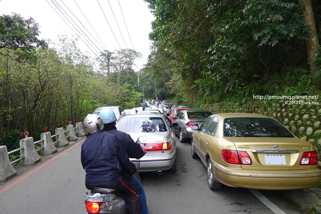 從半山腰就已經開始塞車了,路邊也有告示要車子在山下就先靠邊停好車 再步行到山上賞花,但告示歸告示,每一台車還硬是要擠上......