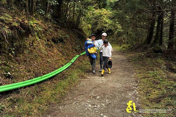 20131110深秋的太平山台灣山毛櫸國家步道散步趣_006.jpg