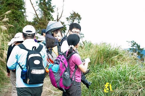 20131110深秋的太平山台灣山毛櫸國家步道散步趣_023.jpg