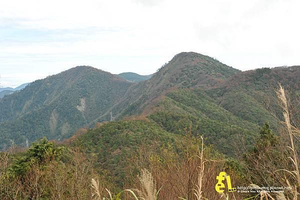 20131110深秋的太平山台灣山毛櫸國家步道散步趣_025.jpg