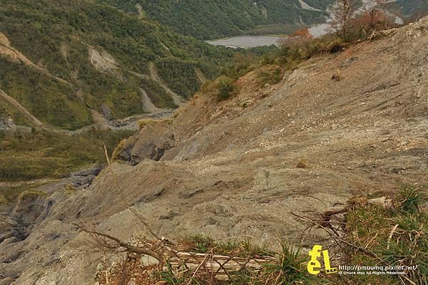 20131110深秋的太平山台灣山毛櫸國家步道散步趣_032.jpg
