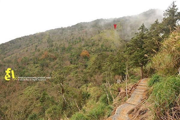 20131110深秋的太平山台灣山毛櫸國家步道散步趣_073.jpg
