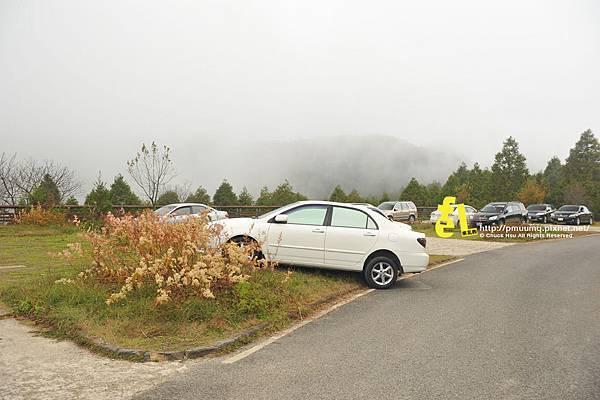 20131110深秋的太平山台灣山毛櫸國家步道散步趣_085.jpg