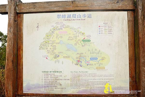 20131110深秋的太平山台灣山毛櫸國家步道散步趣_087.jpg
