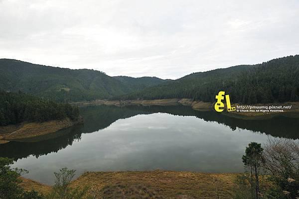 20131110深秋的太平山台灣山毛櫸國家步道散步趣_092.jpg