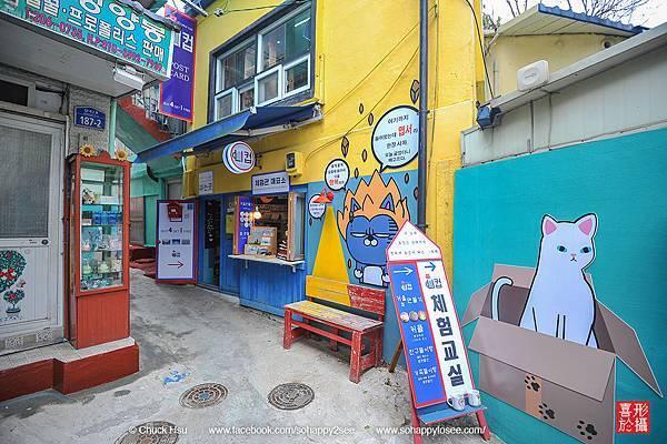 花漾釜慶鎮海賞櫻5日_005