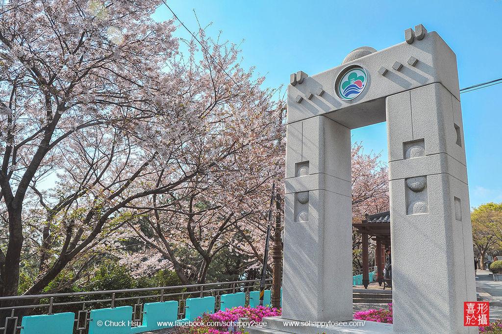 花漾釜慶鎮海賞櫻5日_035.jpg