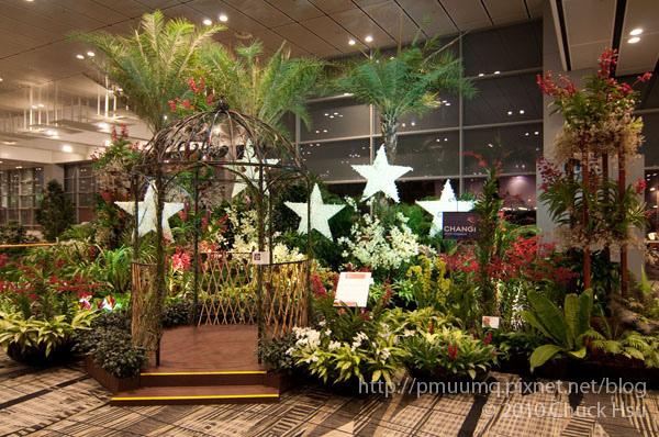 樟宜機場感覺很像植物園.jpg