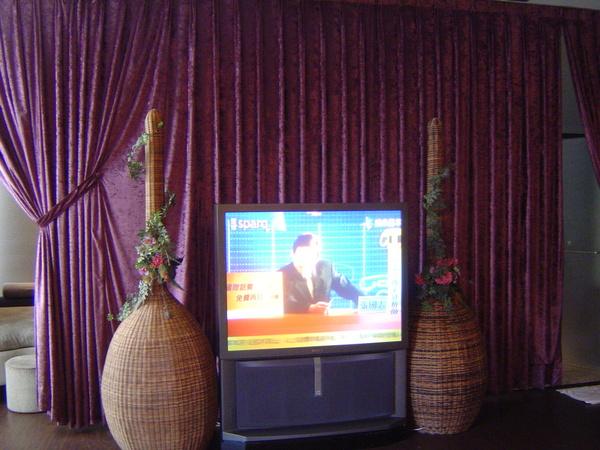 悅萊大電視