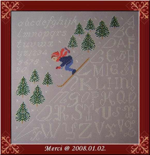 Ski(3)