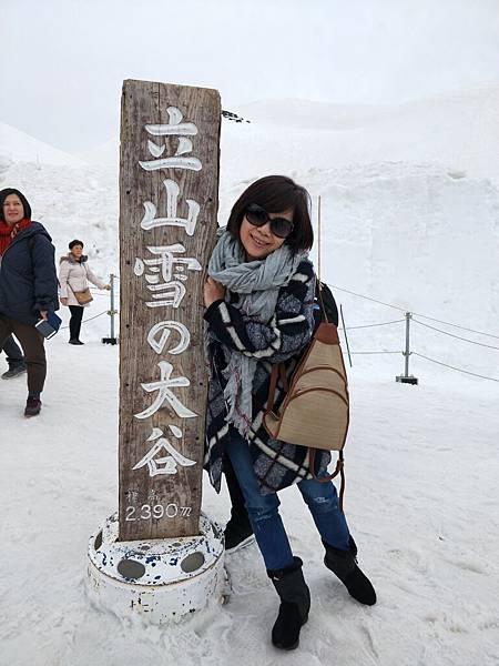 阿姨與立山雪的大谷