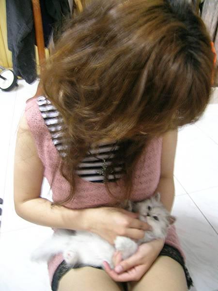 克爾芙小姐和她的貓