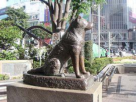 270px-Hachiko200505-4.jpg