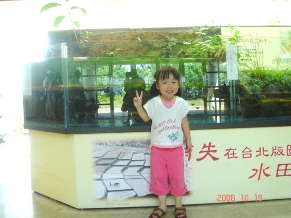 2008101905.jpg