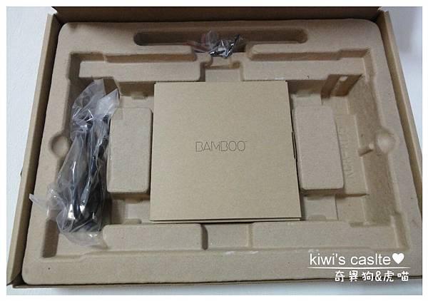 DSC03439-4