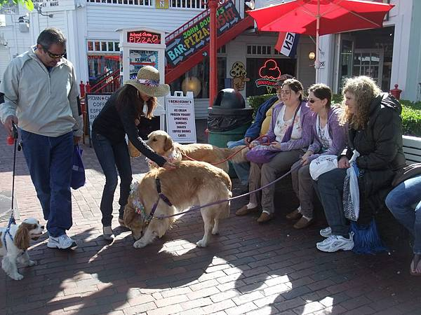 0531 Provincetown (48)