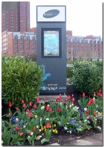 0411 Baltimore 101拷貝.jpg