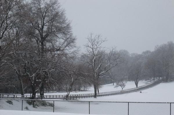 1205 2009 First Snow (36).jpg