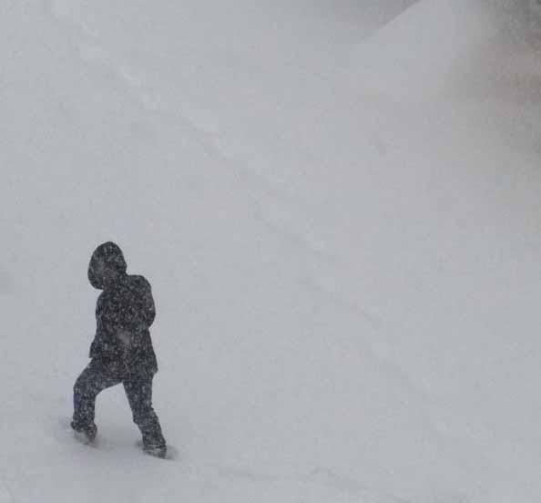 1220 big snow 004-1.jpg