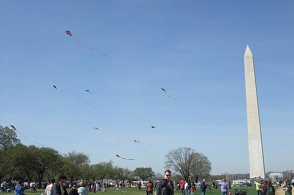 0327 Kite Festival (13).JPG