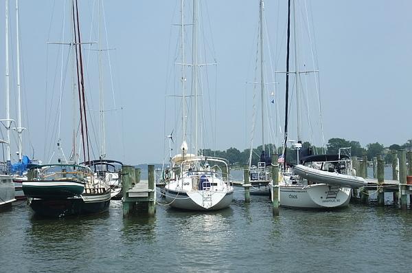 0705 Selby Bay Sailing (62).JPG