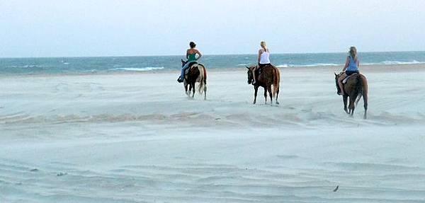 0724 Cape Hatteras National Seashore (86).JPG